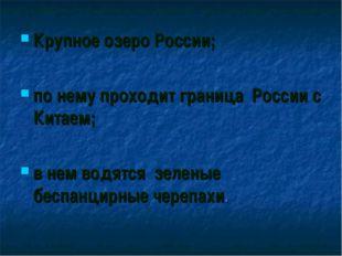 Крупное озеро России; по нему проходит граница России с Китаем; в нем водятся