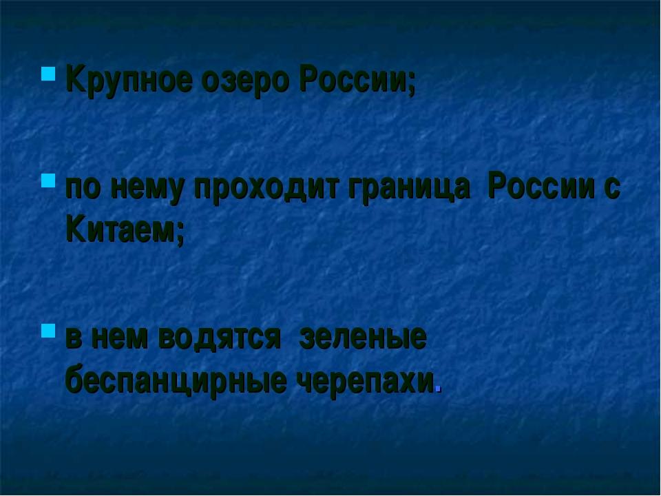 Крупное озеро России; по нему проходит граница России с Китаем; в нем водятся...