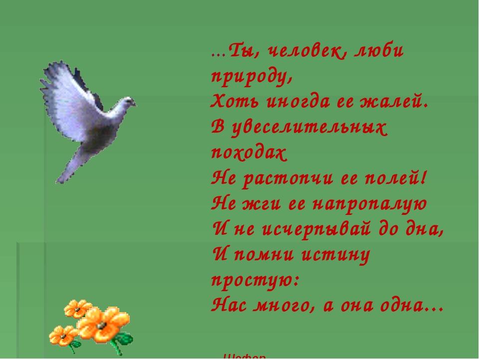 …Ты, человек, люби природу, Хоть иногда ее жалей. В увеселительных походах Не...