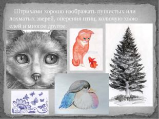 Штрихами хорошо изображать пушистых или лохматых зверей, оперения птиц, колю