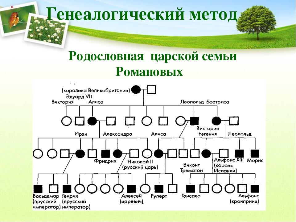 http://fs00.infourok.ru/images/doc/223/22160/3/img11.jpg