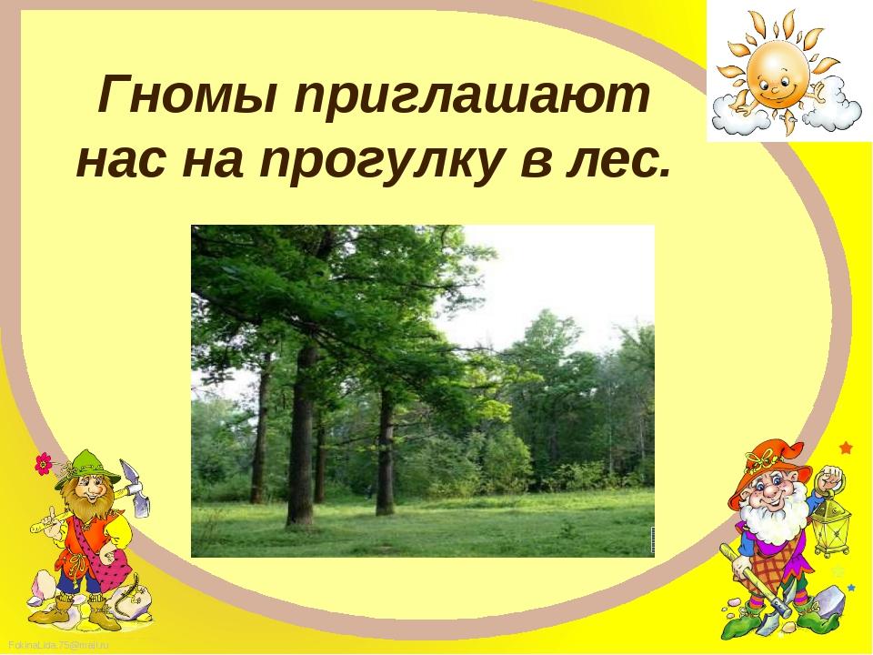 Гномы приглашают нас на прогулку в лес. FokinaLida.75@mail.ru