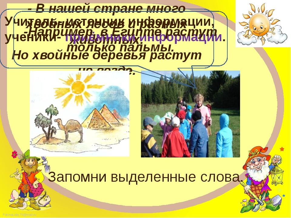 - В нашей стране много хвойных лесов и разных животных. Но хвойные деревья ра...