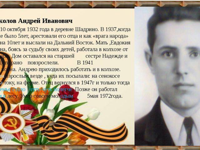 Соколов Андрей Иванович Родился 10 октября 1932 года в деревне Шадрино. В 19...