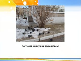 Вот такая кормушка получилась: http://linda6035.ucoz.ru/