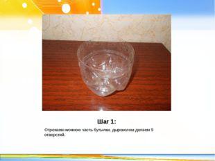 Шаг 1: Отрезаем нижнюю часть бутылки, дыроколом делаем 9 отверстий. http://li