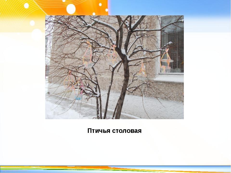 Птичья столовая http://linda6035.ucoz.ru/