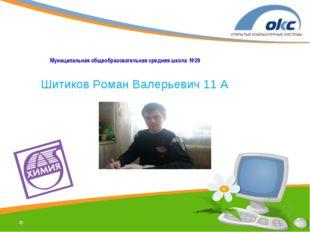  Муниципальная общеобразовательная средняя школа №29 Шитиков Роман Валерьеви