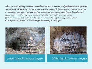 Общее число пещер составляет больше 40, а потому Мурадымовское ущелье считает