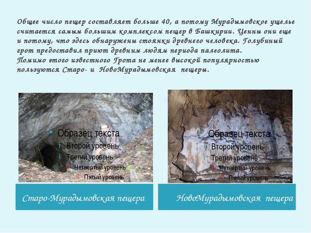 Общее число пещер составляет больше 40, а потому Мурадымовское ущелье считает...