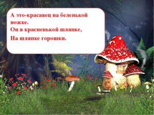А это-красавец на беленькой ножке. Он в красненькой шляпке, На шляпке горошки.