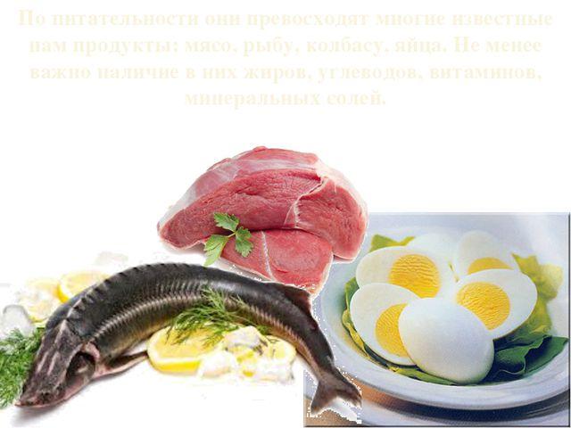 По питательности они превосходят многие известные нам продукты: мясо, рыбу, к...