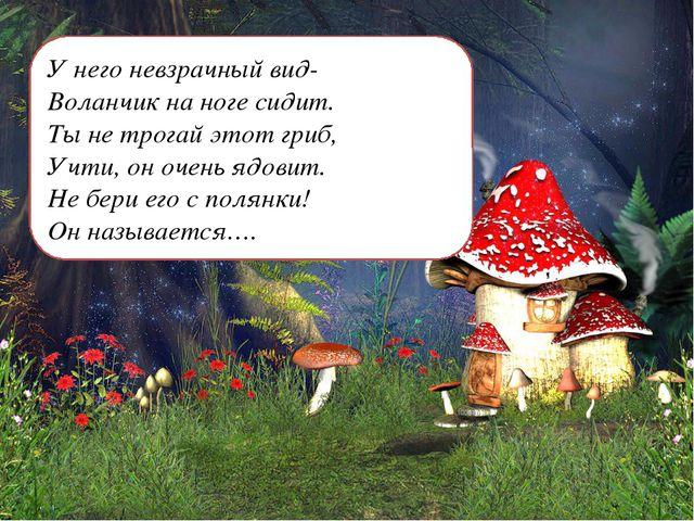 У него невзрачный вид- Воланчик на ноге сидит. Ты не трогай этот гриб, Учти,...