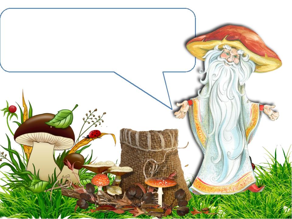 Плотный, крепкий, статный, В шляпе бурой и нарядной. Это гордость всех лесов,...