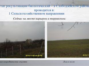 II этап рекультивации биологический – в Слободзейском районе он проводится в: