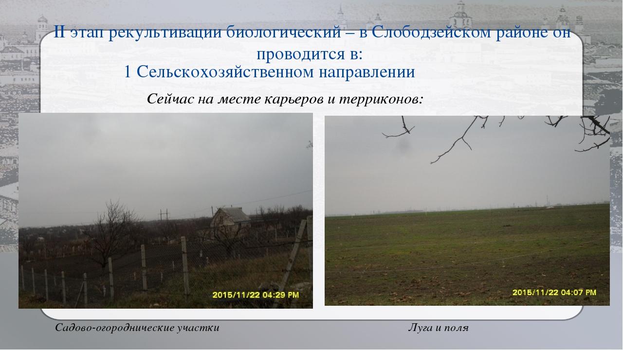 II этап рекультивации биологический – в Слободзейском районе он проводится в:...
