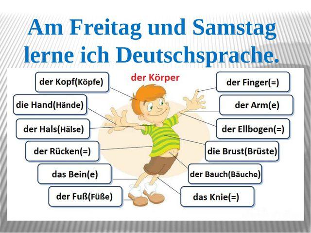 Am Freitag und Samstag lerne ich Deutschsprache.