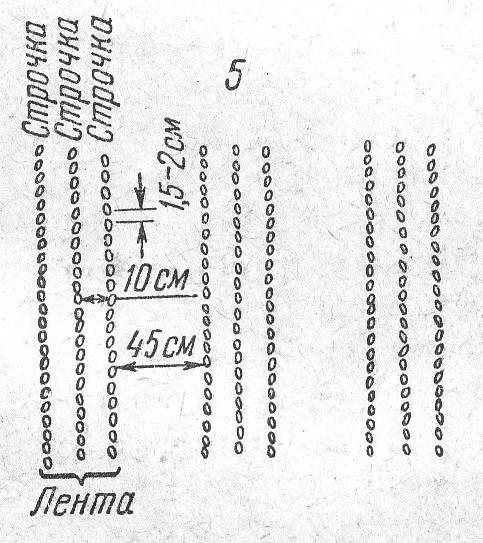 C:\Documents and Settings\Анна Тимарина\Мои документы\Мои рисунки\Untitled-Scanned-08.jpg