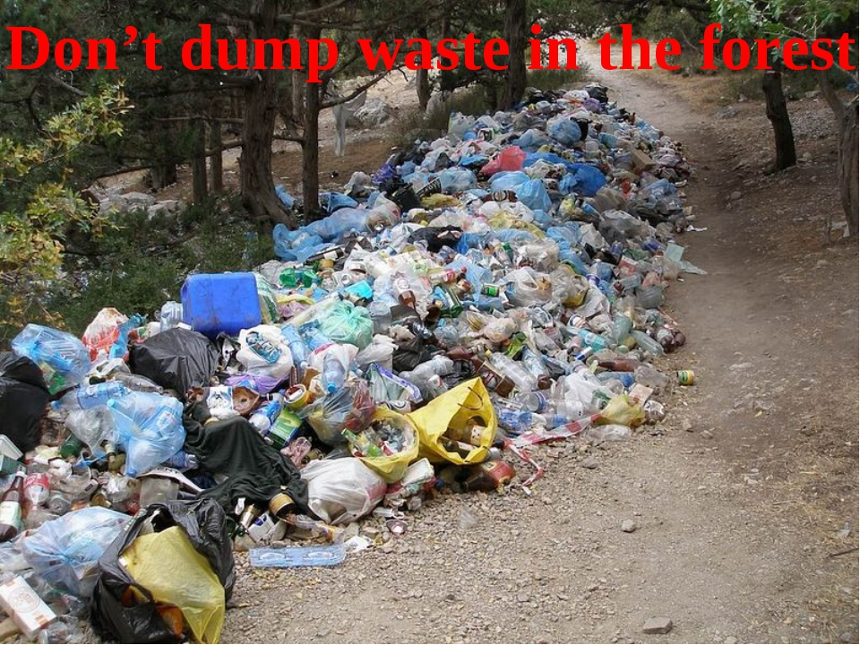 Don't dump waste in the forest