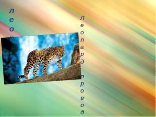 леопард Леопард проводит большую часть времени на деревьях. Ночью леопард отп