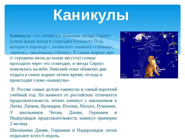 Каникула - это латинское название звезды Сириус (самая яркая звезда в созвезд...