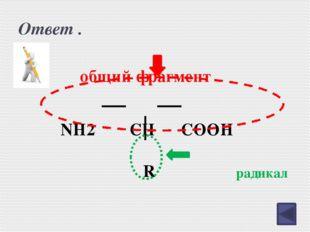 Международная номенклатура АК. CH2 COOH NH2 CH2 CH2 COOH NH2 аминоуксусная ки
