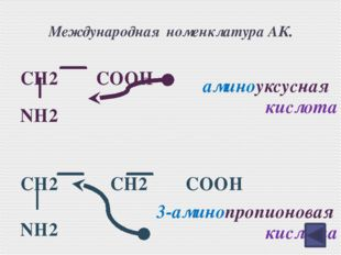 Исторически сложившиеся названия аминокислот. CH2 CH 2 CH2 CH COOH NH2 δ γ β