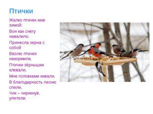 Птички Жалко птичек мне зимой: Вон как снегу навалило. Принесла зерна с собой