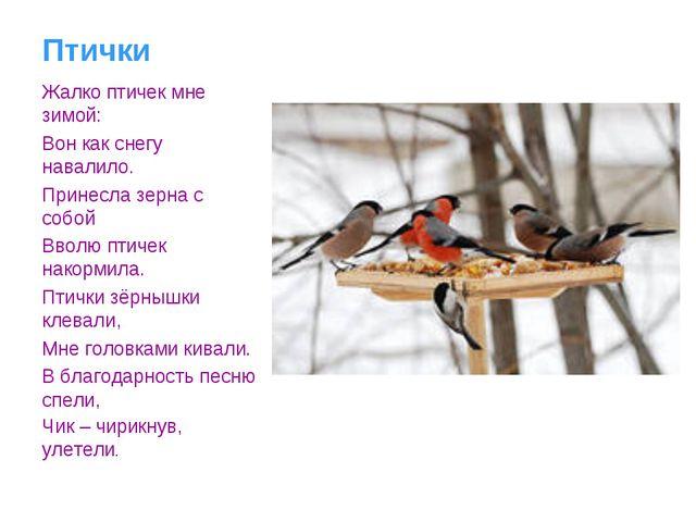 Птички Жалко птичек мне зимой: Вон как снегу навалило. Принесла зерна с собой...