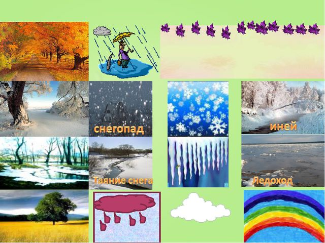 Время года Явление природы