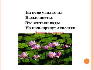 На воде увидел ты Белые цветы. Это жители воды На ночь прячут лепестки. Лили