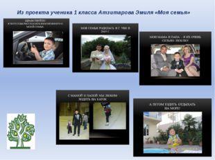 Из проекта ученика 1 класса Атзитарова Эмиля «Моя семья»