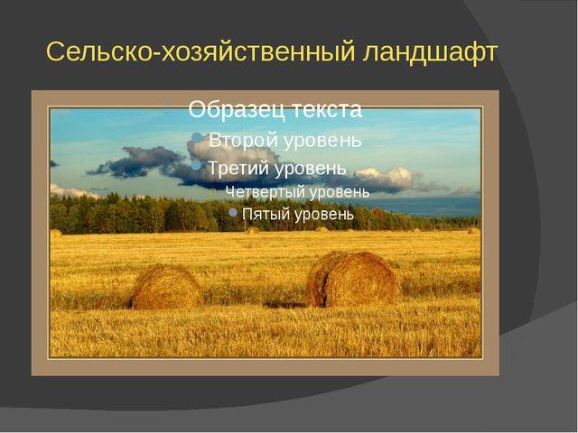 Сельско-хозяйственный ландшафт