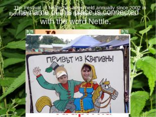 The Festival of Nettle has been held annually since 2002 in the middle of Ju