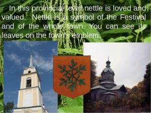 In this provincial town nettle is loved and valued. Nettle is a symbol of th