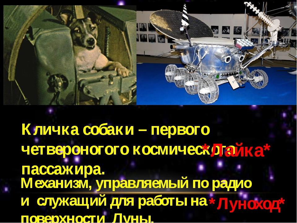 Кличка собаки – первого четвероногого космического пассажира. *Лайка* Механиз...