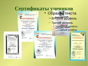Сертификаты учеников