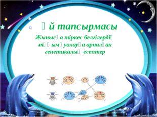 Жынысқа тіркес белгілердің тұқымқуалауға арналған генетикалық есептер Үй тапс