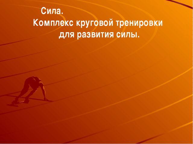 Сила. Комплекс круговой тренировки для развития силы.