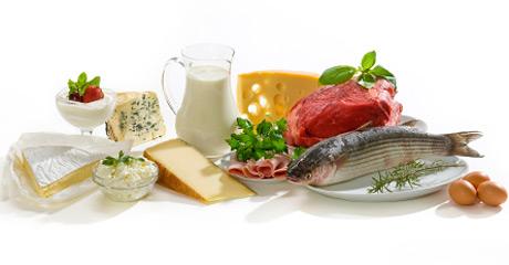 Протеины в продуктах питания