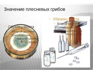Значение плесневых грибов Некоторые виды пеницилла выделяют особое вещество,