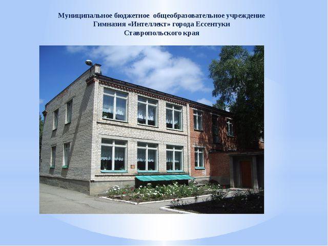 Муниципальное бюджетное общеобразовательное учреждение Гимназия «Интеллект» г...