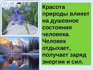 Красота природы влияет на душевное состояния человека. Человек отдыхает, полу