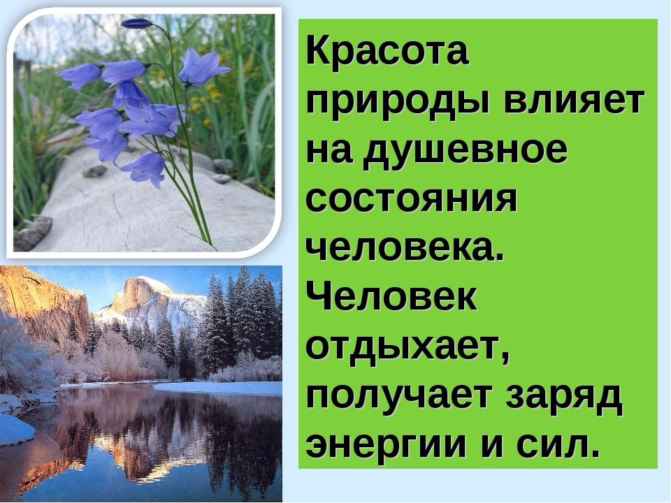 Красота природы влияет на душевное состояния человека. Человек отдыхает, полу...