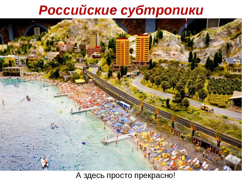 Российские субтропики А здесь просто прекрасно!