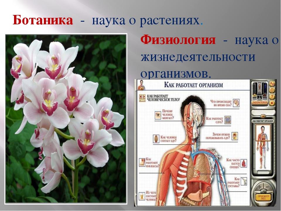 Ботаника - наука о растениях. Физиология - наука о жизнедеятельности организм...