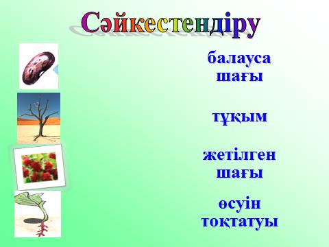hello_html_440e5962.png