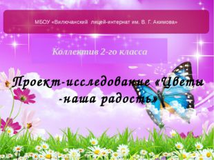 Коллектив 2-го класса МБОУ «Вилючанский лицей-интернат им. В. Г. Акимова» Про