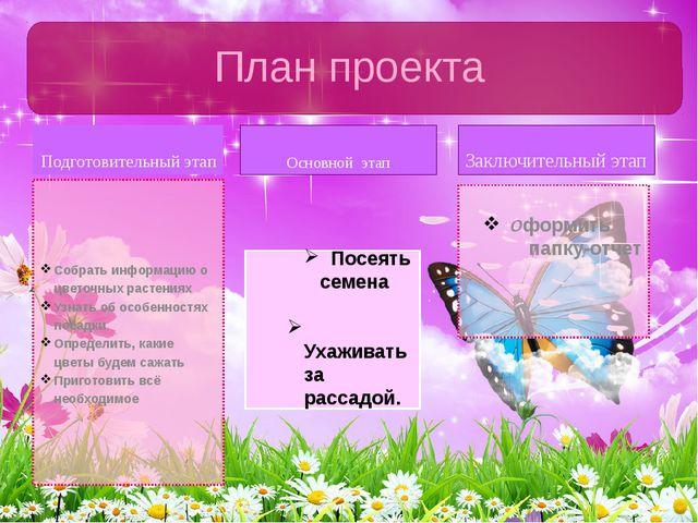 Подготовительный этап Собрать информацию о цветочных растениях Узнать об особ...