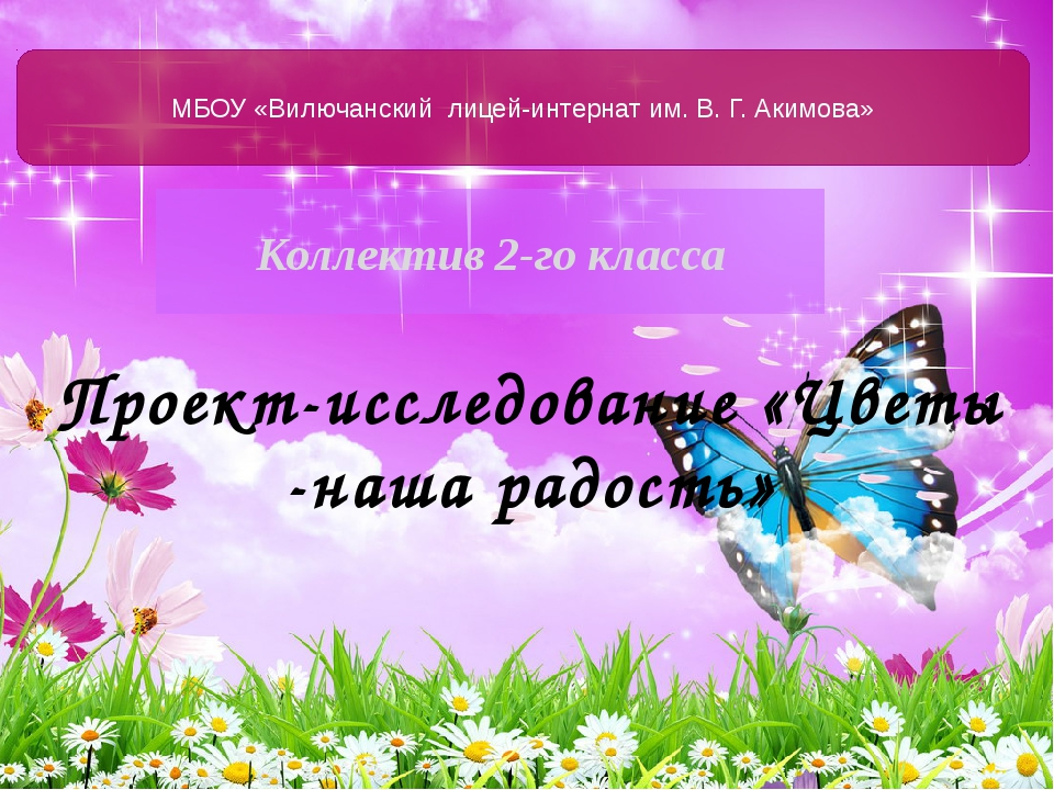 Коллектив 2-го класса МБОУ «Вилючанский лицей-интернат им. В. Г. Акимова» Про...